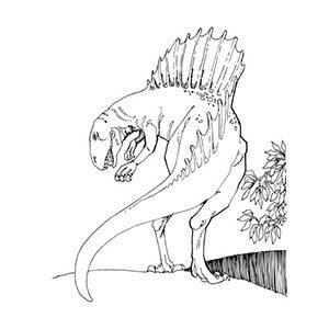 Spinosauro da colorare