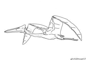 Pterodattilo Dinosauri Con Le Ali