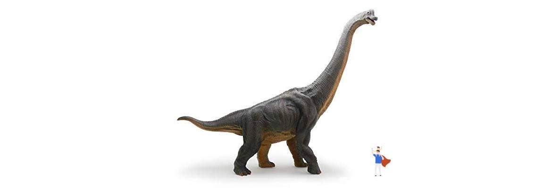 Brachiosauro Dimensioni