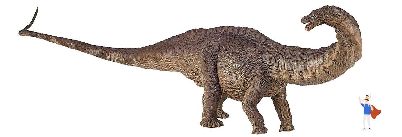 Brontosauro Dimensioni