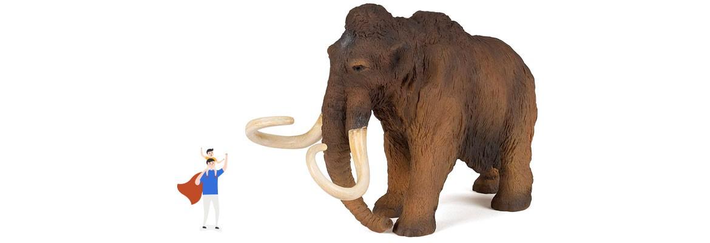 Mammut Dimensioni