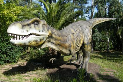 Parco dei Dinosauri, Castellana Grotte – Puglia