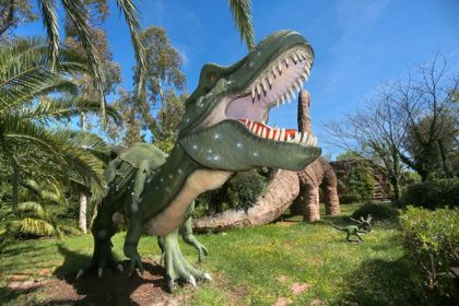 Museo Dinosauri: i dinosauri più vicini a te!
