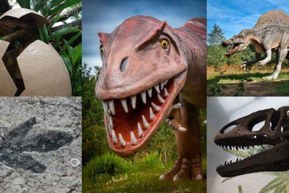 Parco dei Dinosauri, Borgo Celano – Puglia
