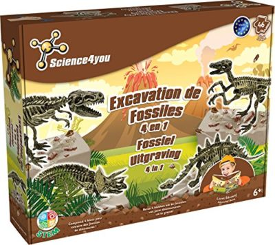 Science4you Sy611092 Maxi Kit Scientifico Fossil 4 In 1 0