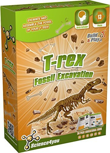 Science4you Fossil Excavation T Rex Stelo Kit Scienza Giocattolo Educativo Giocattolo 0