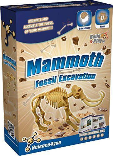 Science4you Scavo Fossile Mammut 481463 0