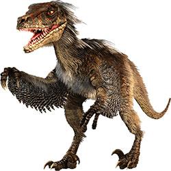 Velociraptor Piumato