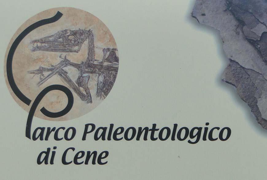 Parco Paleontologico Di Cene
