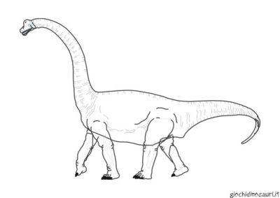 Brachiosauro Immagini Da Colorare