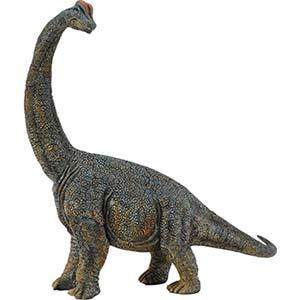 Giochi Dinosauri 6 8 Anni