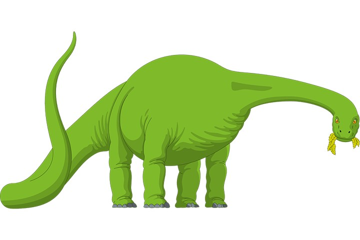 Dinosauri Da Colorare E Stampare
