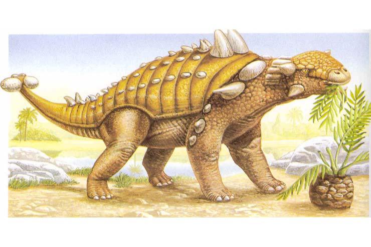 Dinosauri Corazzati Ankilosauro